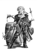 Gnome Bard