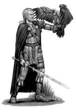 Half-elf Druid