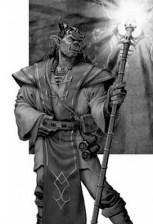 Half-orc Sorcerer